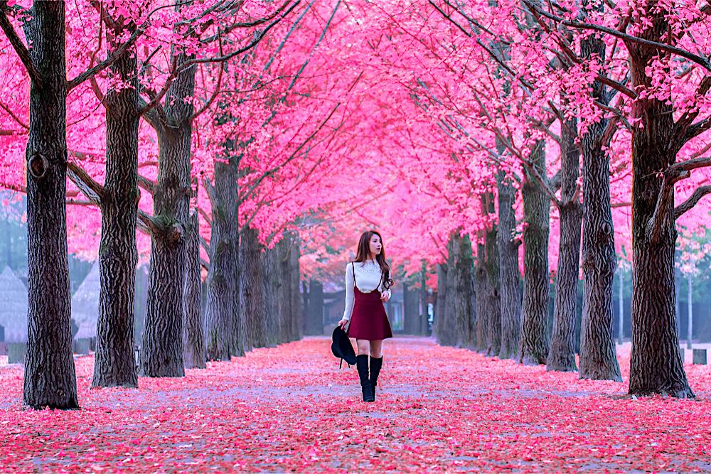 Sweetravel Korea
