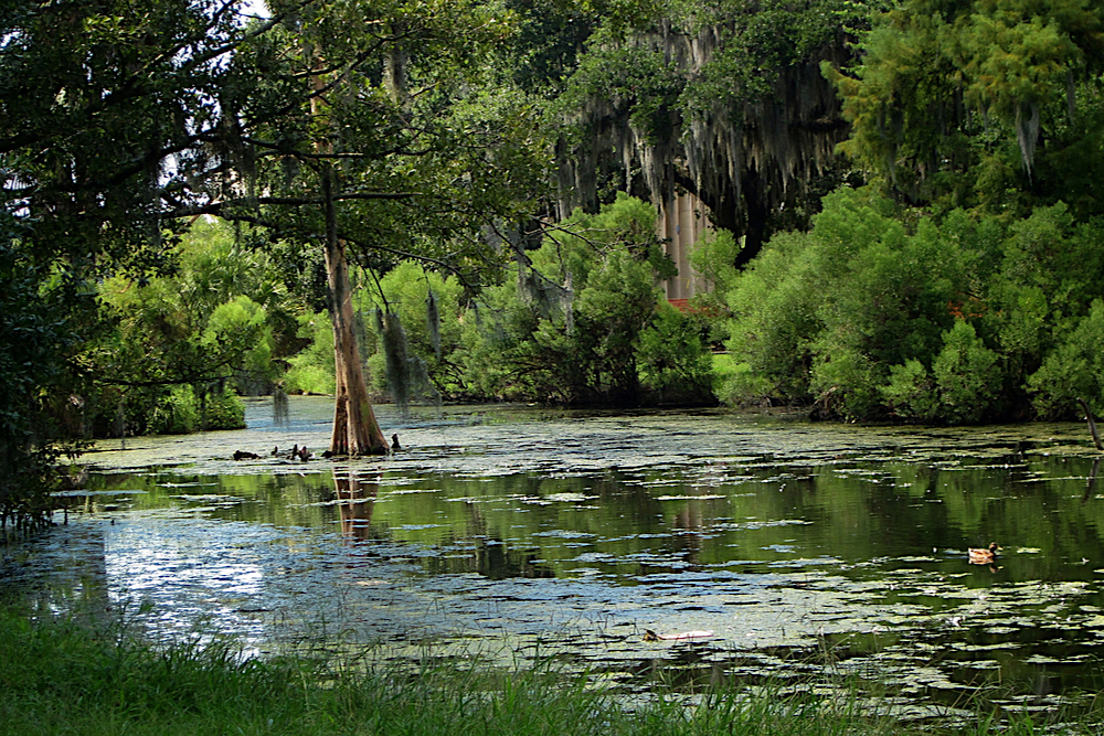 City Park New Orleans travelwishlist