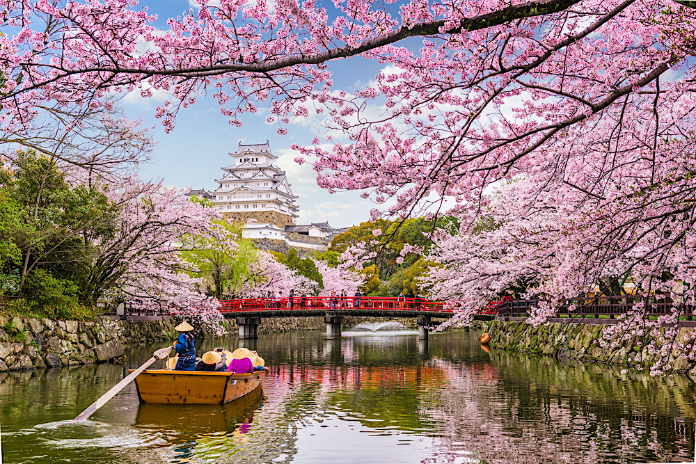 Japan blog twisht