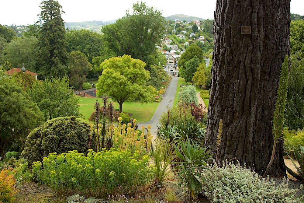 Dunedin Botanic Garden, New Zealand