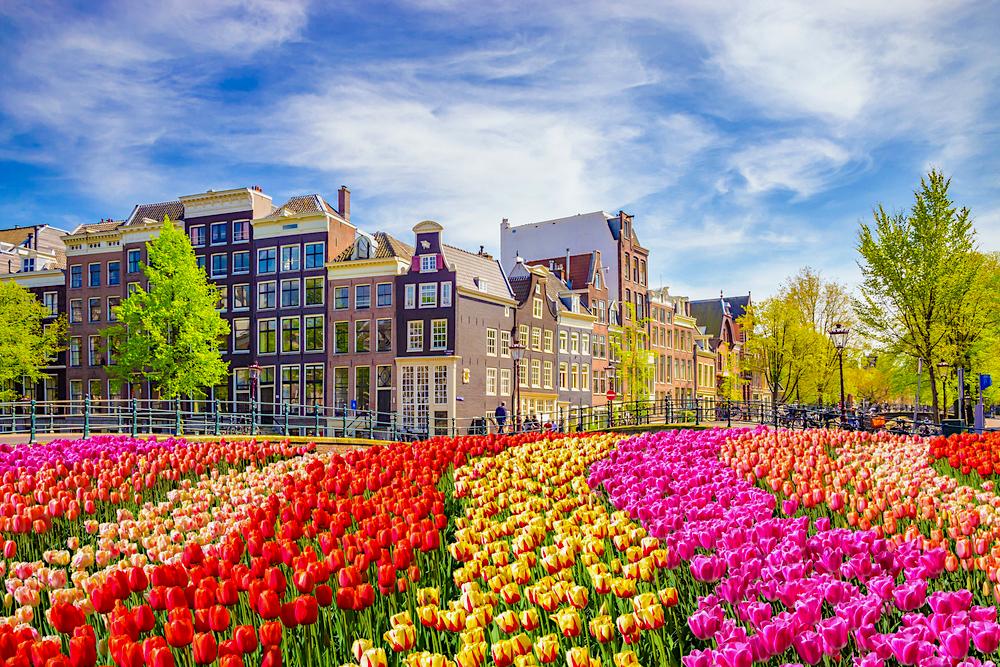 Netherlands Blog