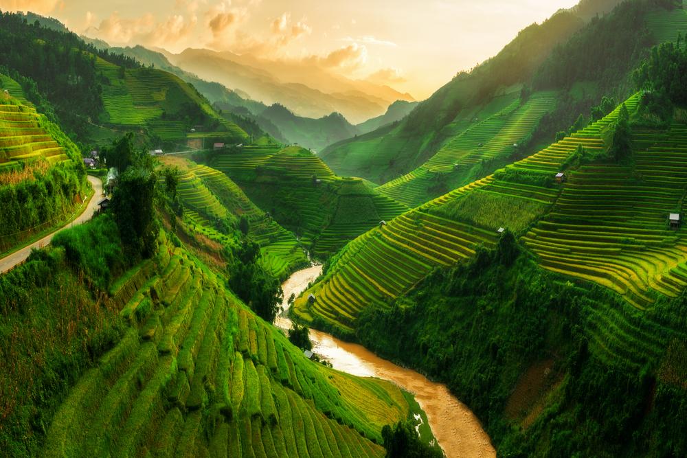 Vietnam blog twisht