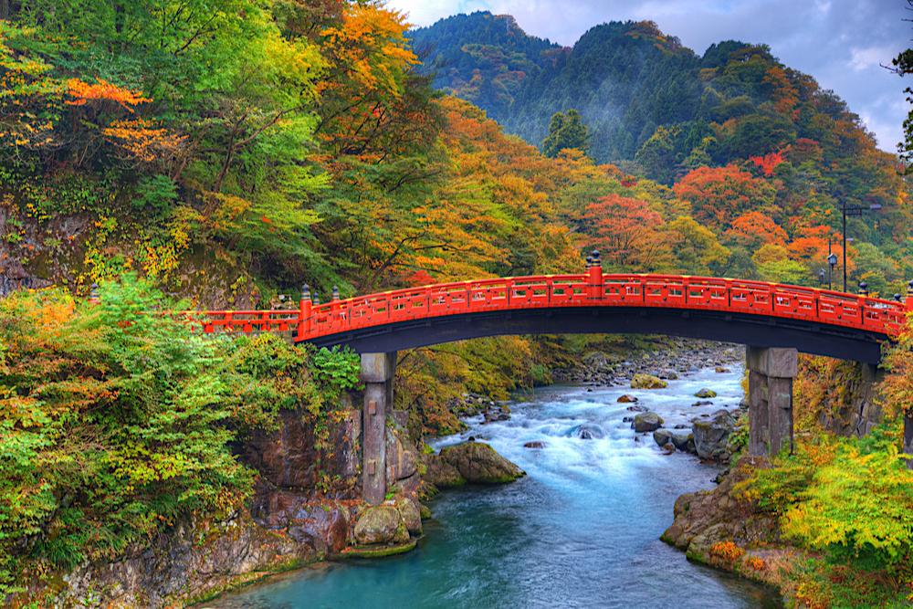Nikko Blog