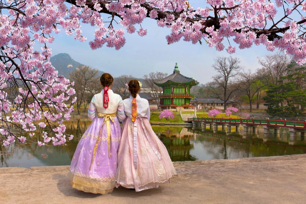 South Korea blog twisht