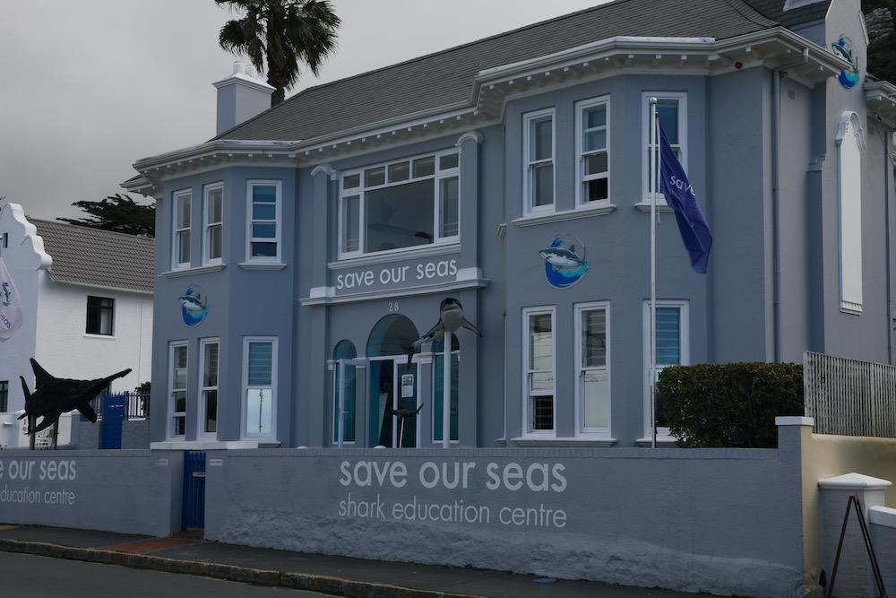 Save our Seas Shark Education Kalk Bay travelwishlist