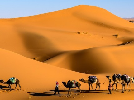 4 Unmissable Cultural Experiences to Have in Morocco