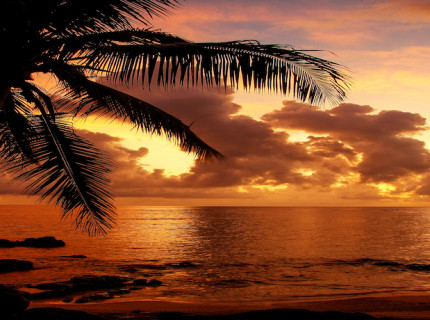 Fiji - the heart of the South Pacific.