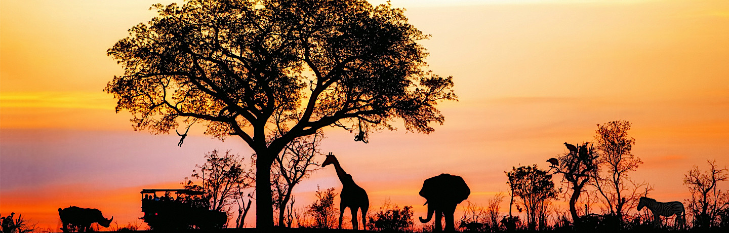 6 Awesome experiences in Limpopo & Mpumalanga, South Africa
