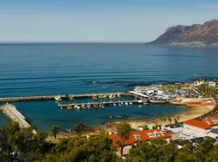 Discover 14 fantastic experiences in Kalk Bay